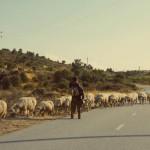 O vazio da estrada, por Hugo Marques. A caminho da Serra da Estrela.